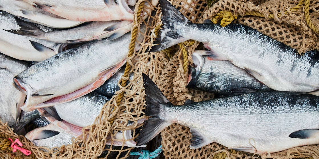 How to Eat Seafood Responsibly: A Guide from Chef Eric Ripert