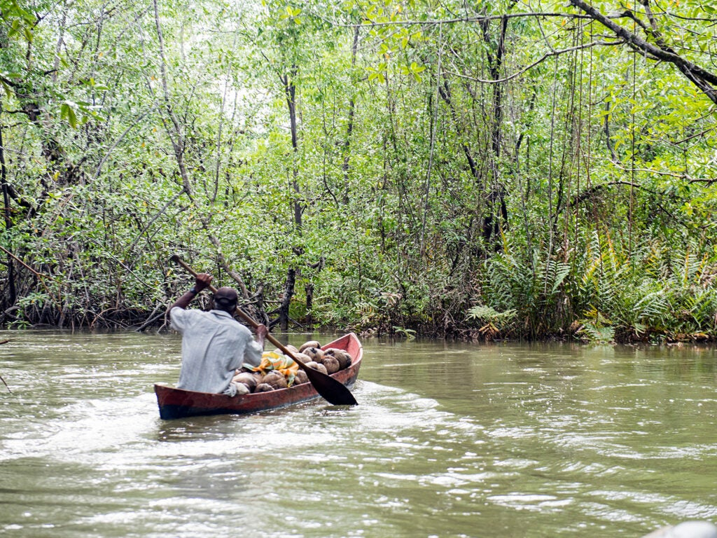 man in a wooden canoe carrying coconuts
