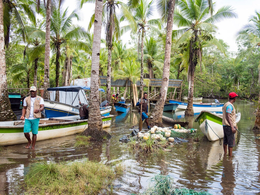 boats along the village of Coquí