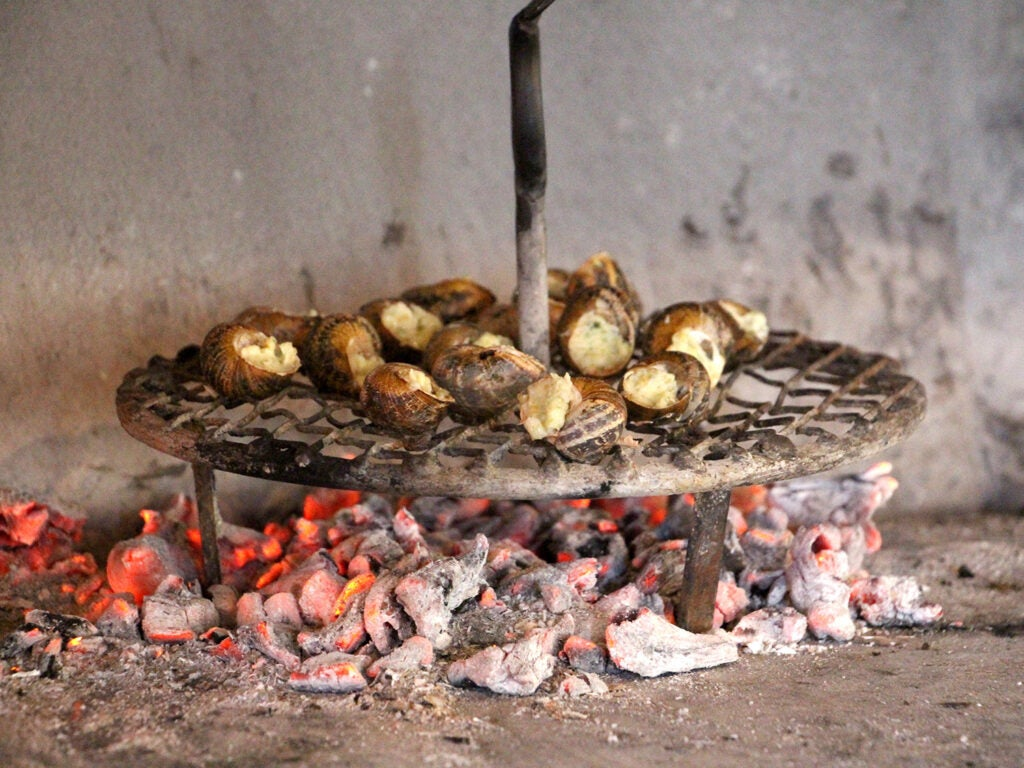 Snails cook over charcoal embers