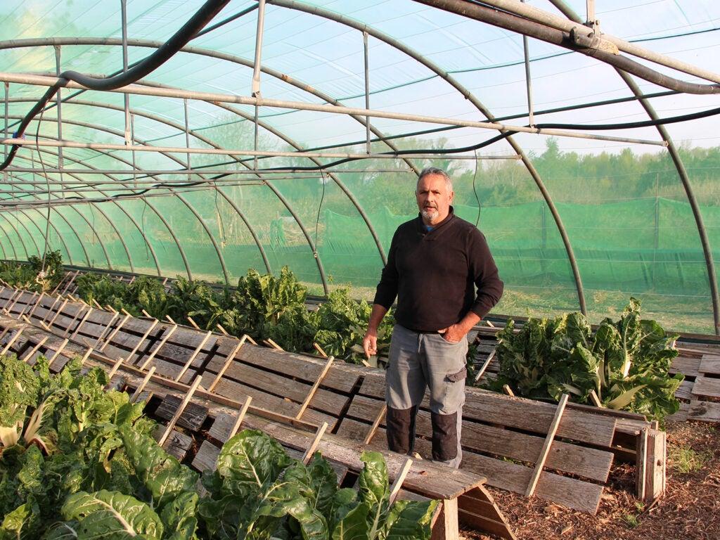 Lorenzo Sanchez at his snail farm