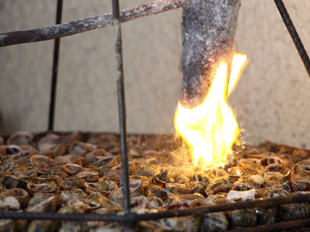 flaming lard over snails on the grill
