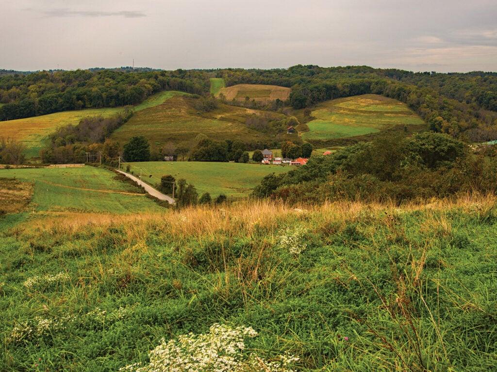 grassy hills of northern Appalachia