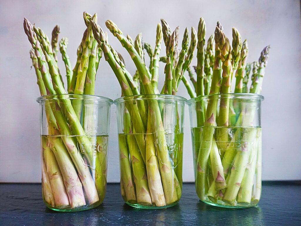 asparagus in jars of water