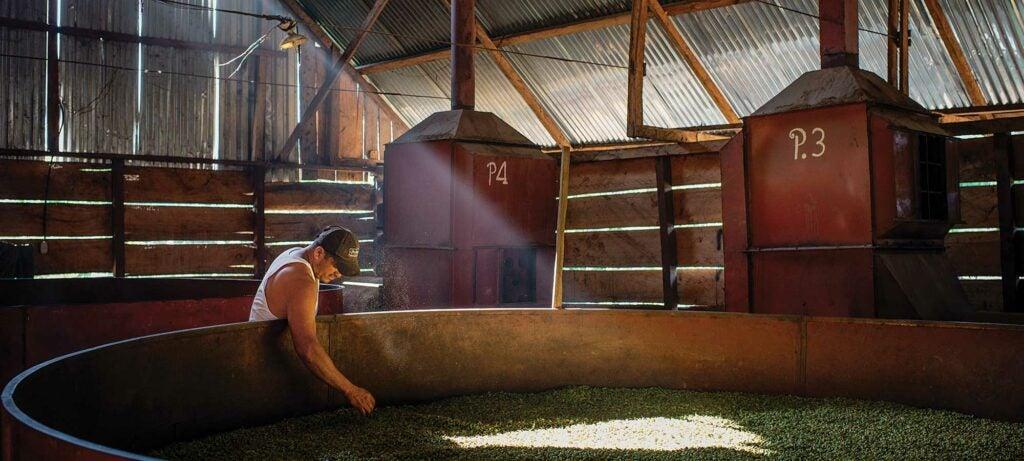 Central American farmer