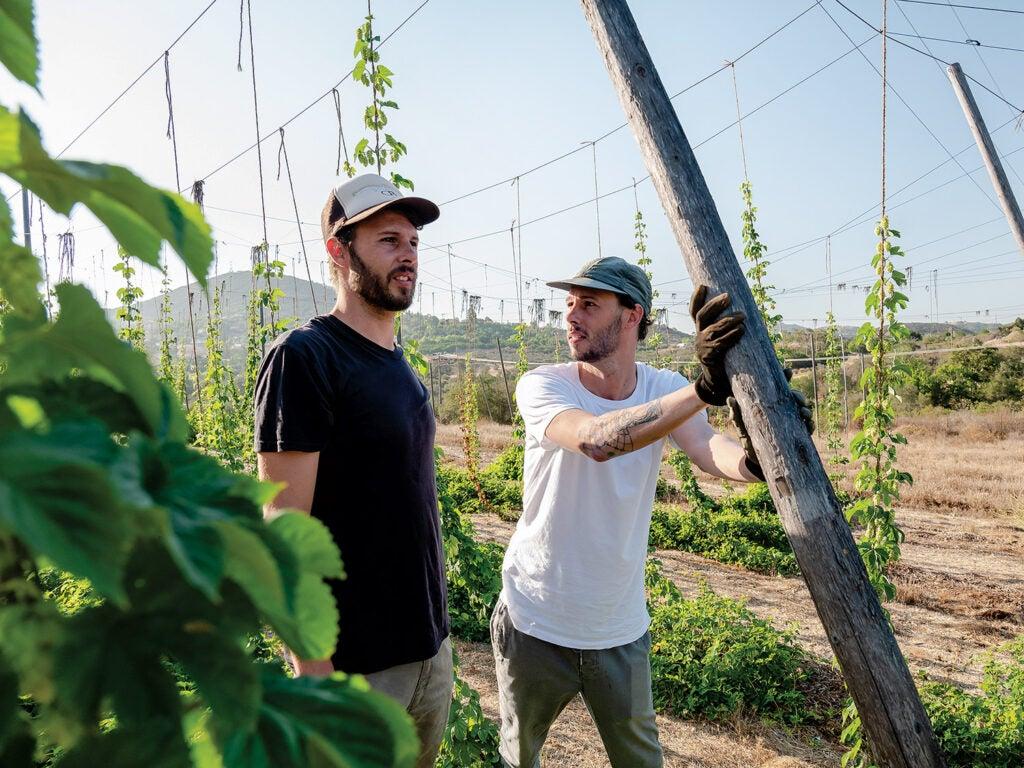 Jordan and Jacob Brownwood in the hops field