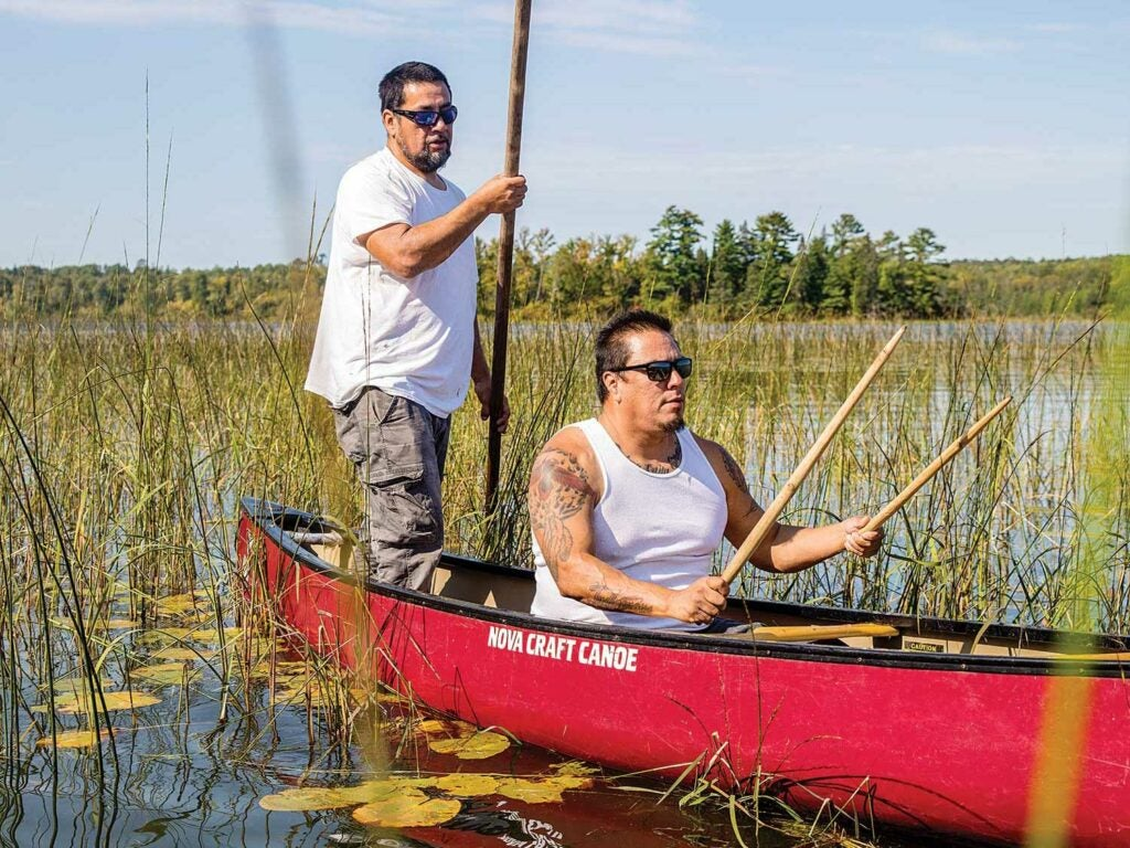 Mike Magney and Moon Jacobson float in field of wild rice on canoe.
