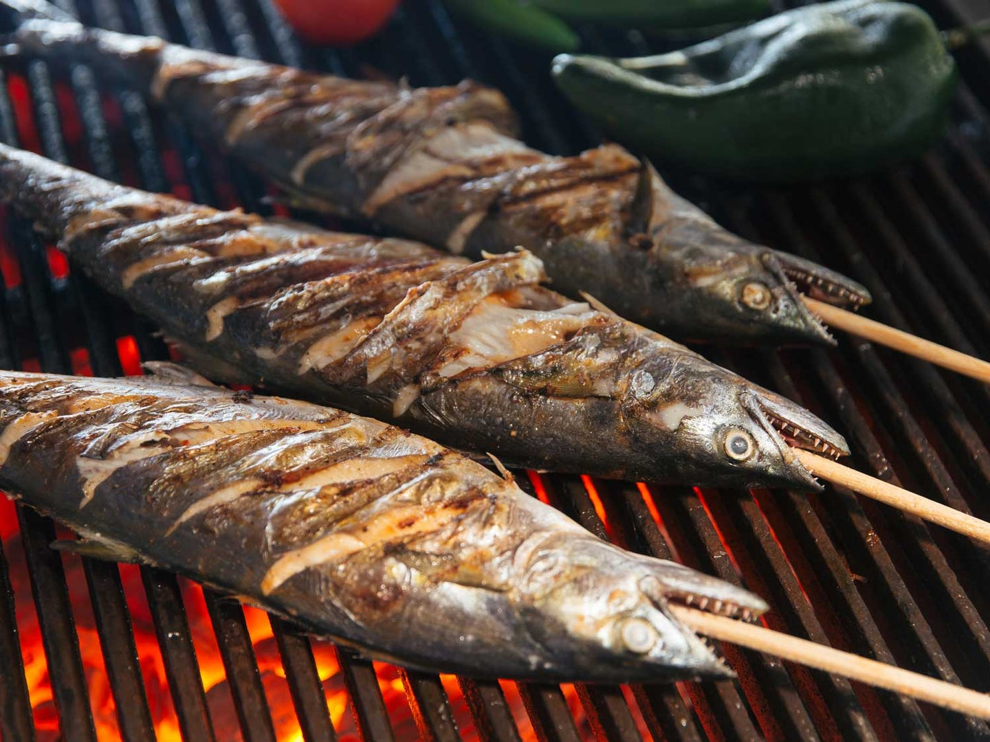 Skewers of fish rubbed with a citrusy achiote-and-tomato-based marinade and grilled.