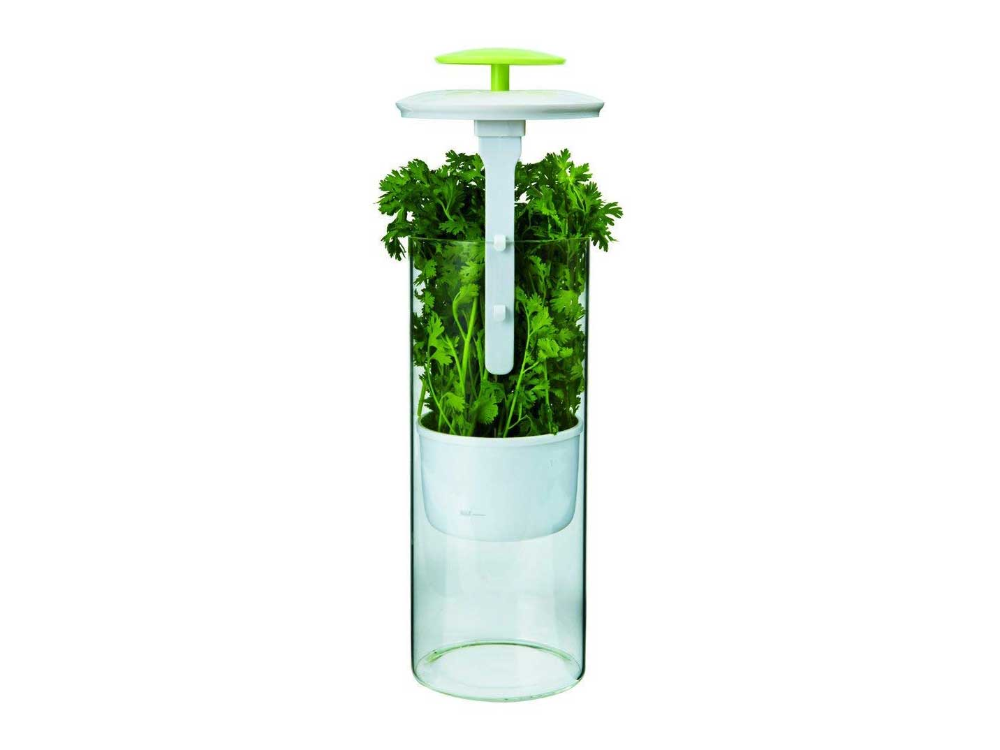 Herb Keeper and Herb Storage Container
