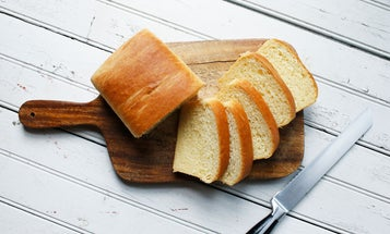 Top Bread Machines for Fresh Homemade Loaves