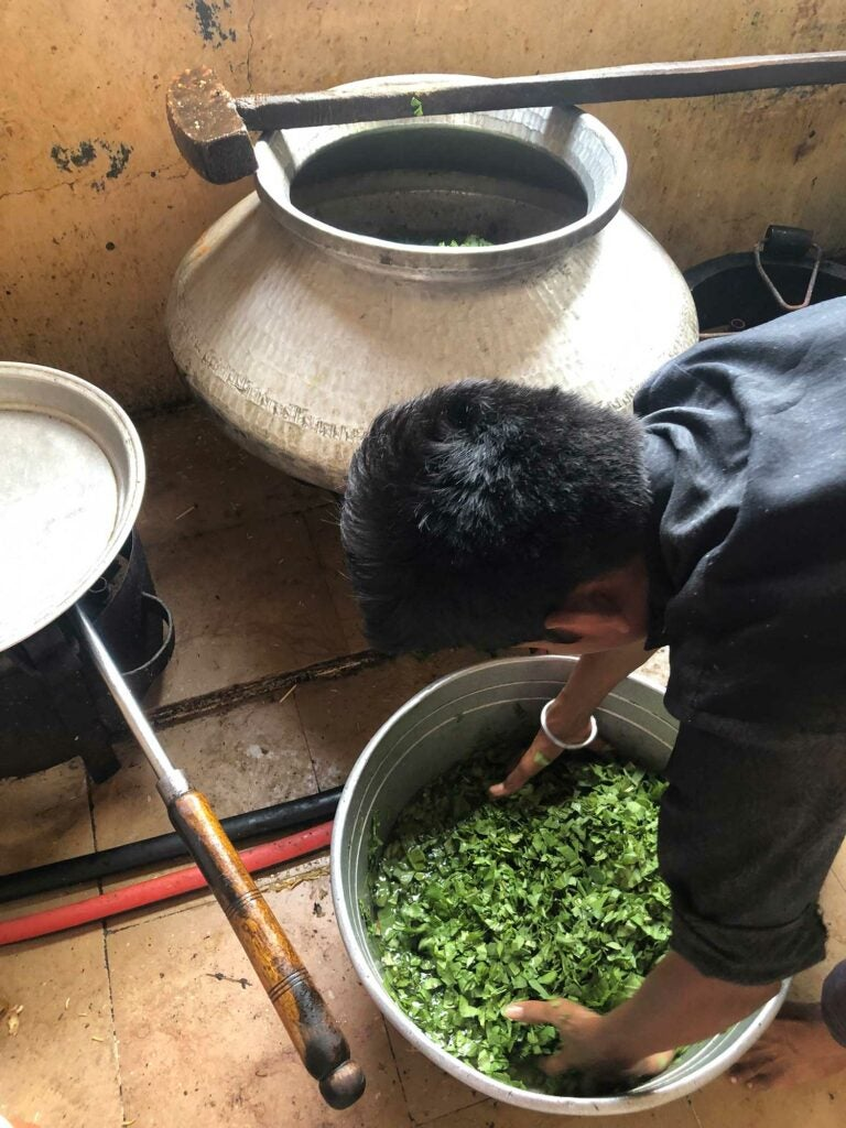 Ram gets chopped up spinach ready for the cook.