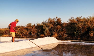 Flor de Sal from Portugal: How This Second-Generation Salt Maker Is Updating the Family Business