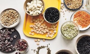 "Bean Eaters Unite! ""Cool Beans"" Author Joe Yonan on Why He Loves Legumes"