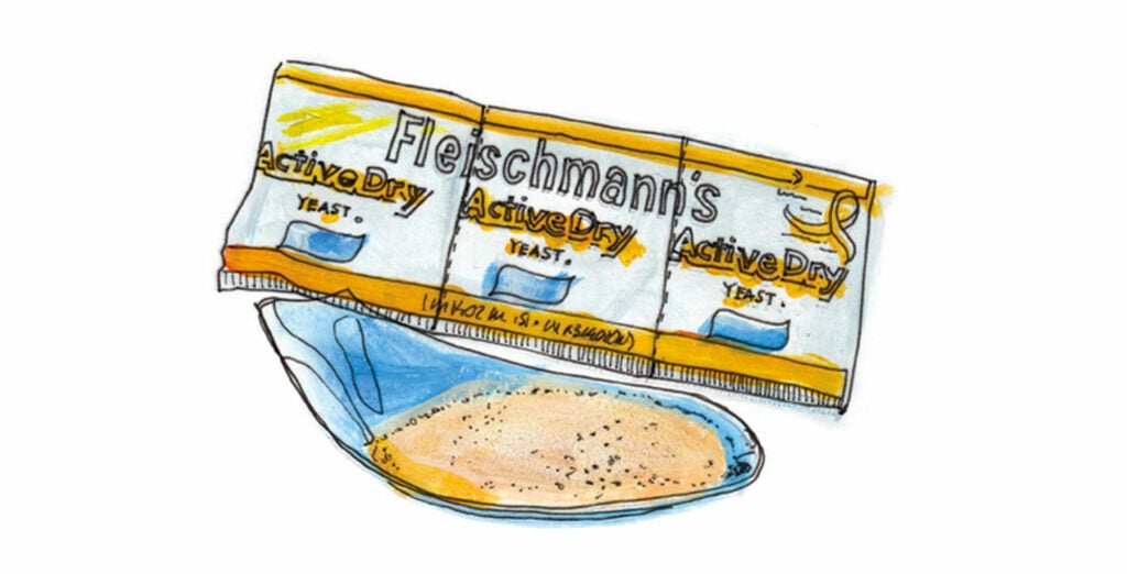 1868 The Fleischmann brothers create America's first commercially produced yeast, a cake of compressed grain, barley malt, and brewer's yeast.