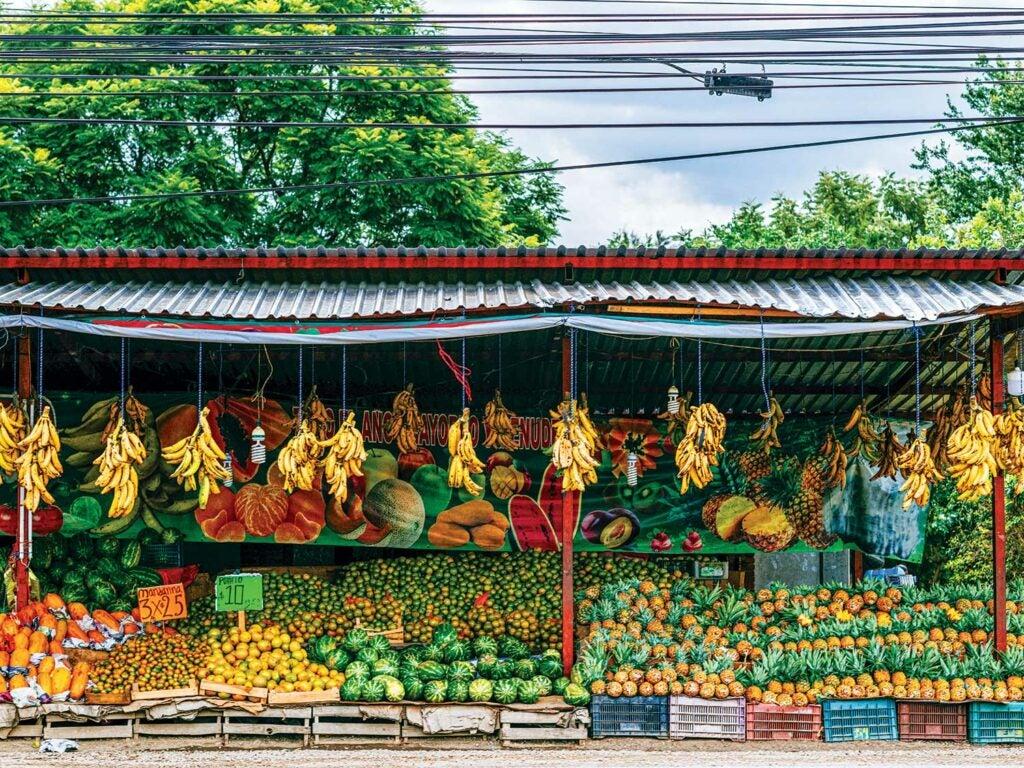 A roadside fruit stand outside Oaxaca de Juárez.