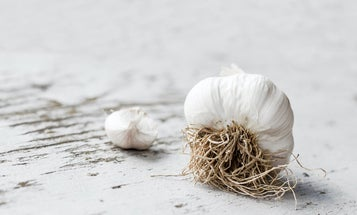 The Best Garlic Press Tools