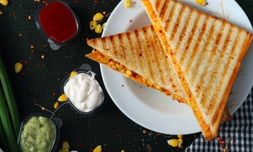 3 Panini Presses to Grill the Perfect Sandwich Every Time
