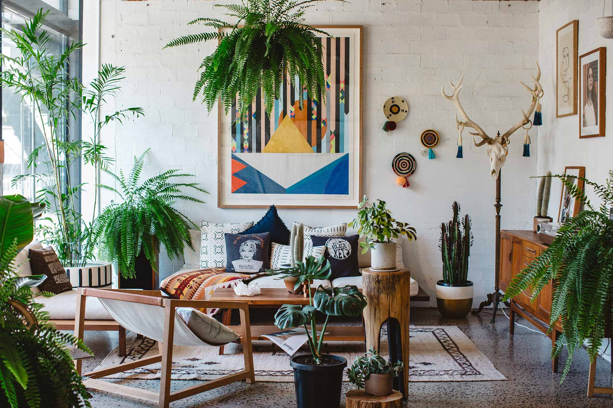 Living room with a lot of house plants
