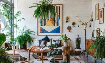 A Perfect Planter or Plant Stand for Giving Your Place that Jungle Vibe