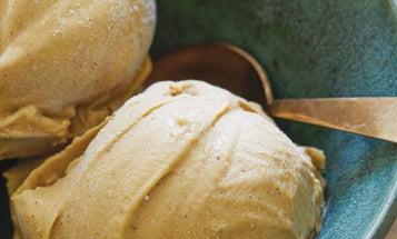 Mesquite Bean Ice Cream