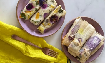 "Vegan Botanical Tamales with Hibiscus-Jackfruit ""Carnitas"""