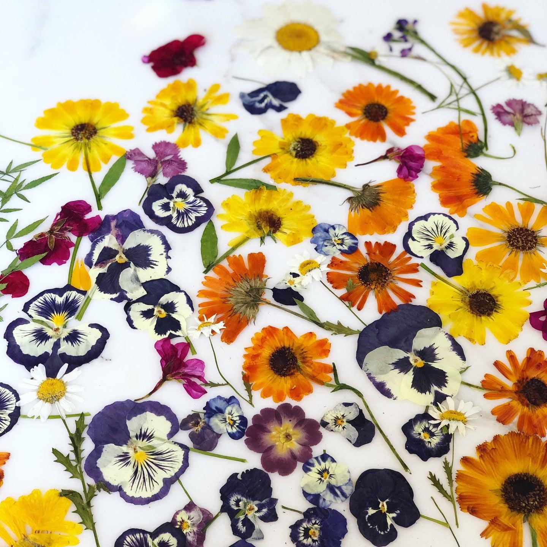 Loria Stern's Edible Pressed Flowers