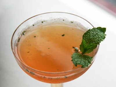 pretty coupe glass of apricot cocktail with rum and vanilla and sprig of mint