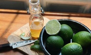 Homemade Lime Cordial