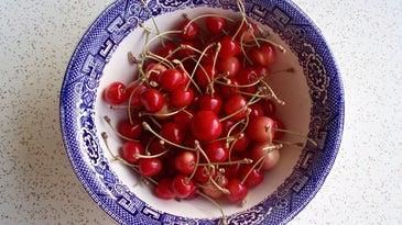 Bowl of cherries for Maraschino cherries