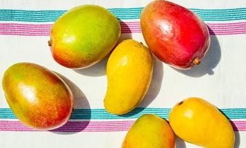 It's Mango Time.