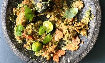 Sambal Tempeh with Lemon Basil