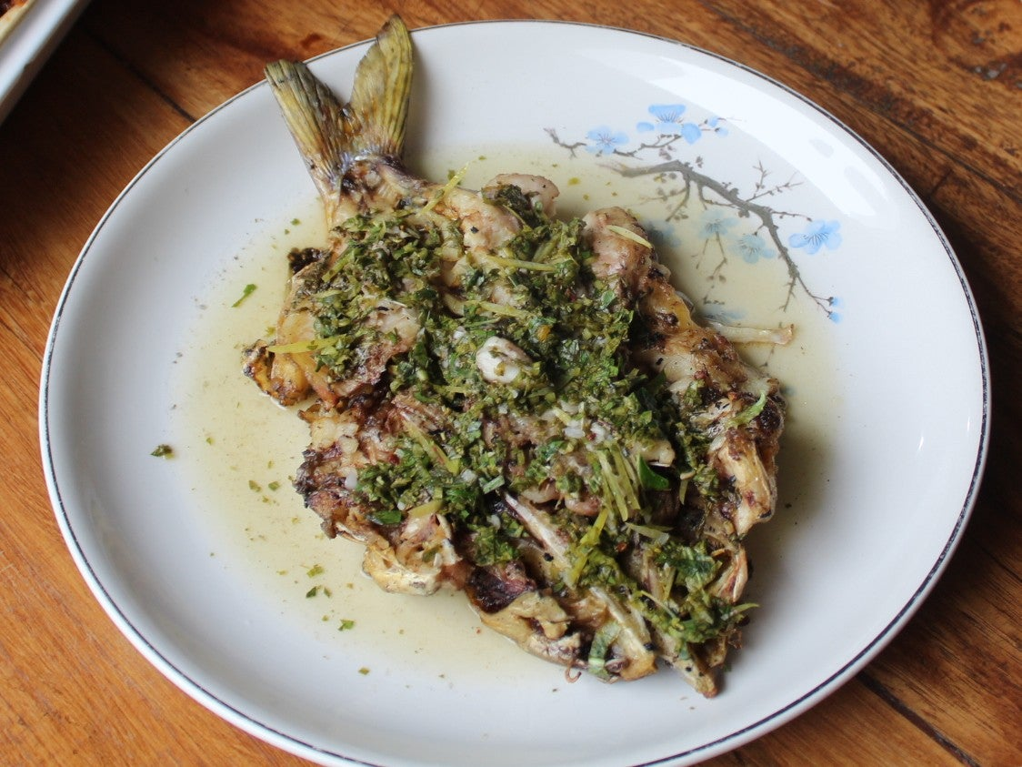 Grileld Catfish with Chimichurri Sauce