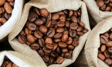 From Sustainable to Specialty, the Best Coffee Subscriptions Will Elevate Your Morning Ritual