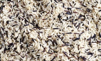 Whether You're Making Sushi or Risotto, We Found The Best Rice for Every Meal