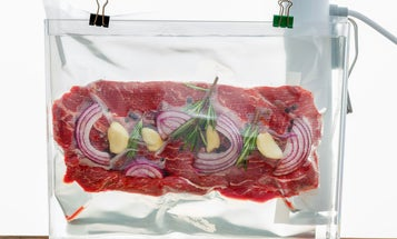 The Best Sous Vide Cooker to Make Restaurant-Worthy Dishes at Home