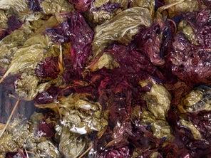 Showcase Your End-of-Season Aromatics in Cosme's Herbal Elixir