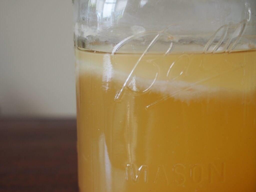 Floating Mother of Vinegar in Peach Vinegar