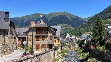 Spanish Civet in Vielha, Catalonian Mountain Town